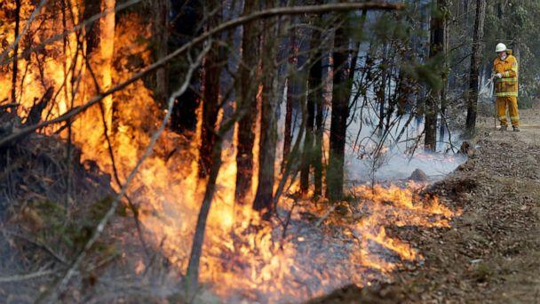 PHOTO:A firefighter manages a controlled burn near Tomerong, Australia, Jan. 8, 2020, set in an effort to contain a larger fire nearby. (Rick Rycroft/AP)