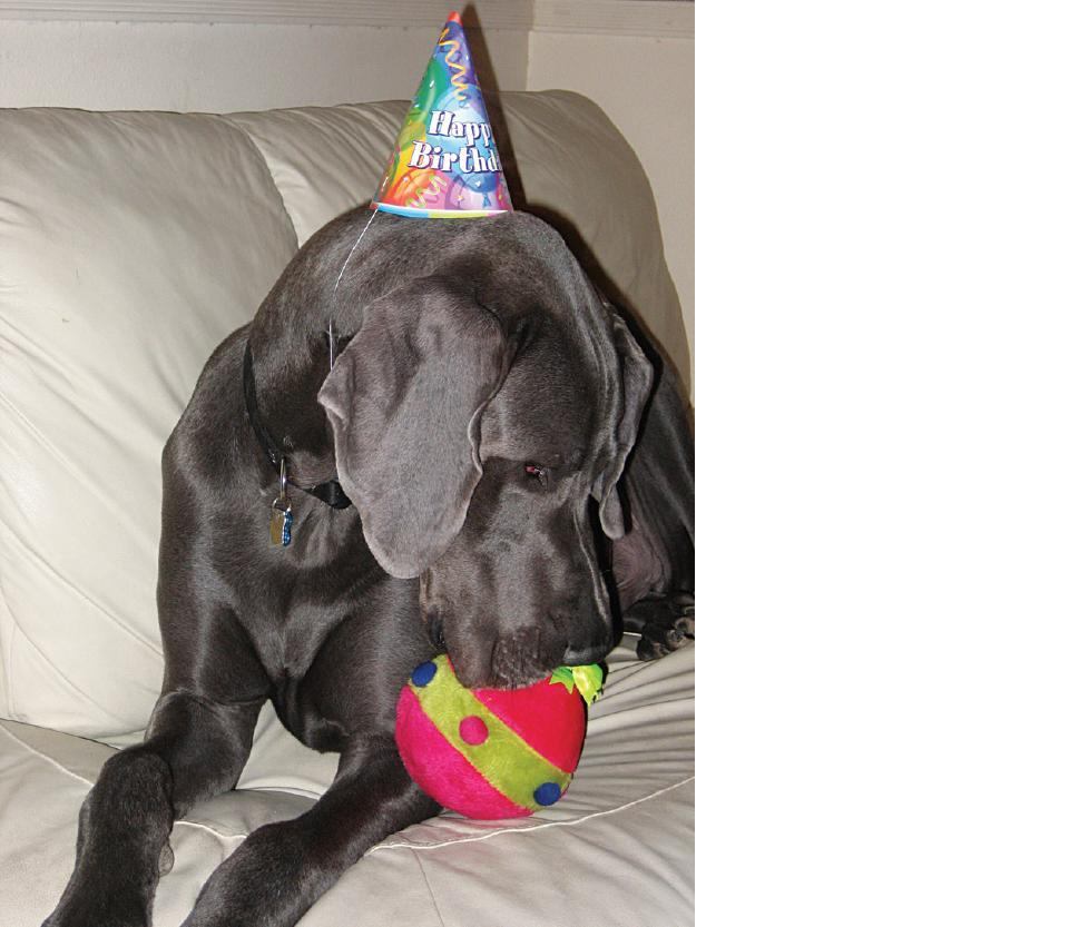 George rocks out in a party hat.