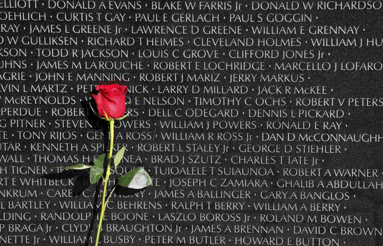 A rose is left at the Vietnam Veterans Memorial on Veterans Day in Washington, November 11, 2013. REUTERS/Larry Downing (UNITED STATES - Tags: POLITICS MILITARY ANNIVERSARY TPX IMAGES OF THE DAY)