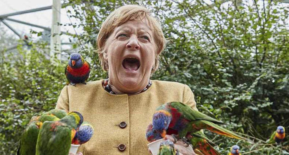 'Too funny': German leader's photoshoot goes terribly wrong