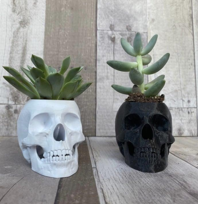 """<p>If you've got <a href=""""http://www.popsugar.com/home/how-to-take-care-indoor-plants-47771575"""" class=""""link rapid-noclick-resp"""" rel=""""nofollow noopener"""" target=""""_blank"""" data-ylk=""""slk:foliage growing in your room"""">foliage growing in your room</a>, give it a <a class=""""link rapid-noclick-resp"""" href=""""https://www.popsugar.com/Halloween"""" rel=""""nofollow noopener"""" target=""""_blank"""" data-ylk=""""slk:Halloween"""">Halloween</a> twist by popping it in this <span>Human Skull Planter</span> ($8 to $56)</p>"""