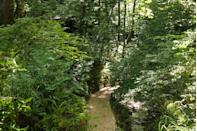 """<p>'What is a chine?' we hear you ask. 'Chine' is a word used only in the Isle of Wight and Dorset, and it signifies a deep and narrow ravine with water running down to the sea. And the gorge is not the only marvel in Shanklin. Taking a leisurely stroll along the shaded paths beside the waterfalls, you'll find around 150 varieties of wild plants and species of moss flourishing in this unique habitat. </p><p>In Victorian times, Shanklin Gorge briefly became a spa and you can still visit the treatment rooms now at the Royal Spa Hotel. </p><p><a class=""""link rapid-noclick-resp"""" href=""""https://www.countrylivingholidays.com/tours/isle-of-wight-gardens-osborne-walkden-tour"""" rel=""""nofollow noopener"""" target=""""_blank"""" data-ylk=""""slk:VISIT SHANKLIN WITH CL"""">VISIT SHANKLIN WITH CL</a></p>"""