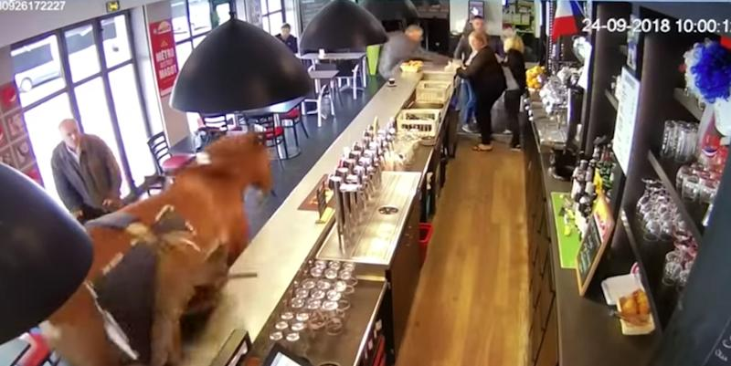 CCTV Footage Captures Runaway Horse Charging Through Bar