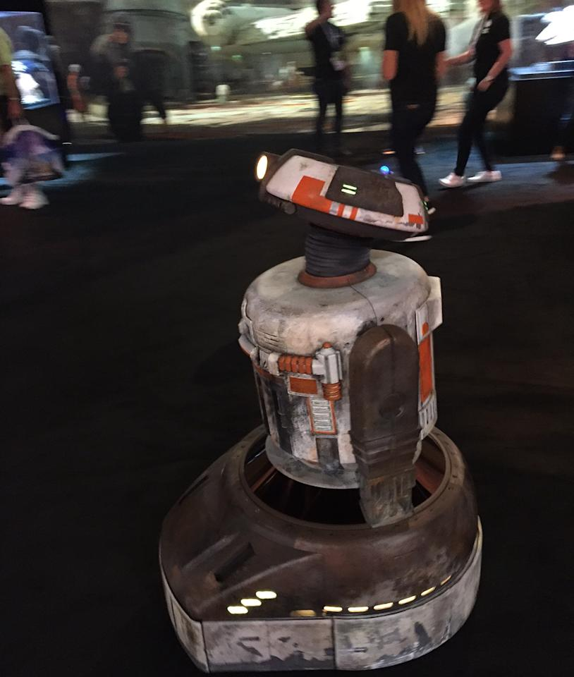 <p>This charming little fellow was buzzing around the pavilion, one dozens of new droids who will be populating <em>Galaxy's Edge</em>. </p>