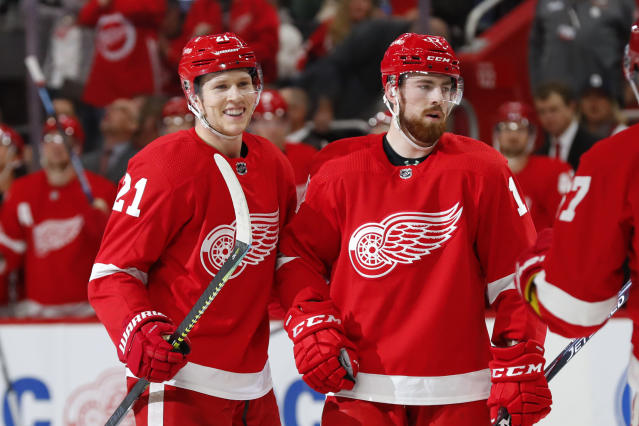 Detroit Red Wings defenseman Dennis Cholowski (21) celebrates his goal with Filip Hronek (17) during the second period of an NHL hockey game against the Vancouver Canucks, Tuesday, Oct. 22, 2019, in Detroit. (AP Photo/Paul Sancya)