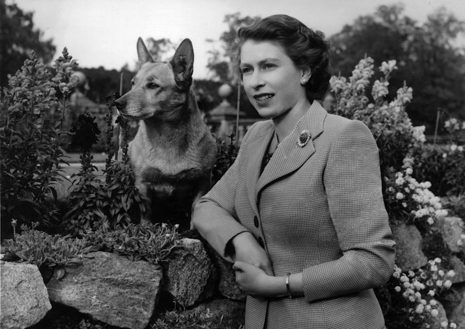 Queen Elizabeth II and her beloved corgi, Susan. Image via Getty Images.