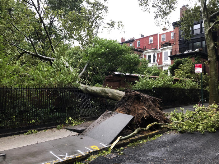 A tree uprooted by high winds lays on a fence in Brooklyn Heights Tuesday, Aug. 4, 2020, in New York as Tropical Storm Isaias is expected to hit the Northeastern U.S. (AP Photo/David Crary)