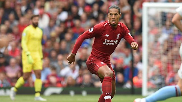 Big price to pay: Virgil van Dijk the £65m man