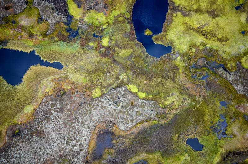 Permafrost in the peat plateaus of northern Norway is beginning to thaw: Sebastian Westermann