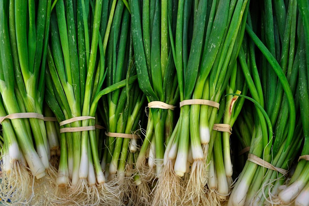 """<p><a class=""""body-btn-link"""" href=""""https://www.amazon.com/Scallion-Seeds-Planting-Non-GMO-Heirloom/dp/B07FM7V2RT/?tag=syn-yahoo-20&ascsubtag=%5Bartid%7C10057.g.28506899%5Bsrc%7Cyahoo-us"""" target=""""_blank"""">BUY NOW</a> <strong>Scallion Seeds,<em> $5.80, amazon.com</em></strong></p><p>Scallions are such a versatile food, and they're a good option for anyone who wants to start indoor gardening but wants something more low-maintenance. Since they can tolerate low light, they're also a good option for those who lack a sunny windowsill. </p>"""