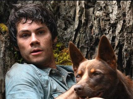 Netflix film 'Love and Monsters' starring Dylan O'Brien and Hero and Dodge the dogsNetflix