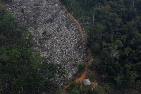 FILE PHOTO: An aerial view of a deforested plot of the Amazon at the Bom Futuro National Forest in Porto Velho