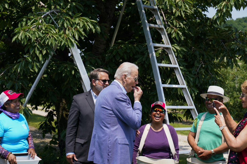 President Joe Biden eats a freshly picked cherry from a bucket while meeting with workers as he tours King Orchards fruit farm with Sen. Gary Peters, D-Mich., and Sen. Debbie Stabenow, D-Mich., right, Saturday, July 3, 2021, in Central Lake, Mich. (AP Photo/Alex Brandon)