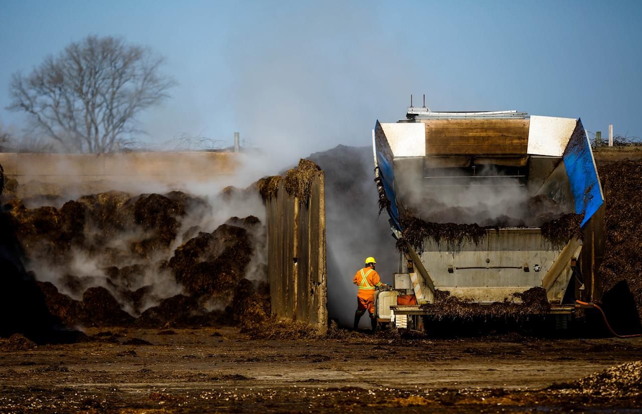 """A man operates machinery holding material to make compost, at the Highline Mushrooms farm, Canada's largest mushroom grower, in Leamington, Ontario, Canada, April 14, 2016. Canada's Liberal government is considering a delay on imposing new restrictions for using low-skilled foreign workers amid a severe shortage of meat-processing and farm workers in one of the world's biggest agricultural exporters. Starting July 1, low-skilled, foreign workers are supposed to account for no more than 10 percent of an employer's workforce, down from the 30 percent allowed just two years ago. REUTERS/Mark Blinch      SEARCH """"CANADA MUSHROOM"""" FOR THIS STORY. SEARCH """"THE WIDER IMAGE"""" FOR ALL STORIES     TPX IMAGES OF THE DAY"""