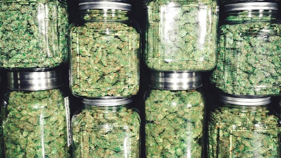 Jars of marijuana