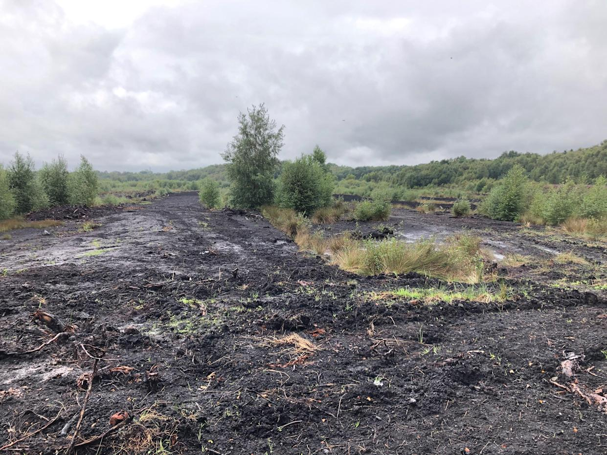 Most of England's peatlands are damaged, degraded and drained which means they are emitting carbon dioxide (Emily Beament/PA)
