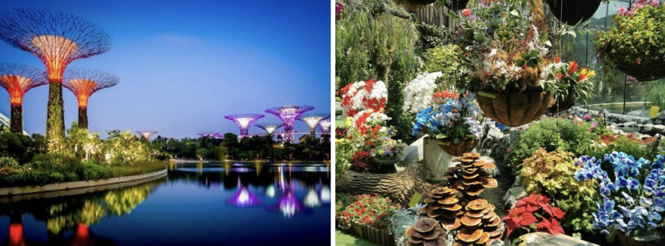 PHOTO: TripAdvisor. Gardens By The Bay