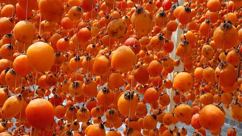 Hanging persimmon - Japanese Dried Persimmon (Hoshigaki) hanged on strings to dry a common sight