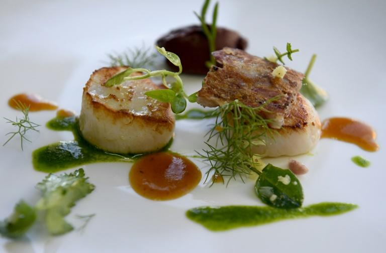 Seared scallops -- a prized seafood delicacy