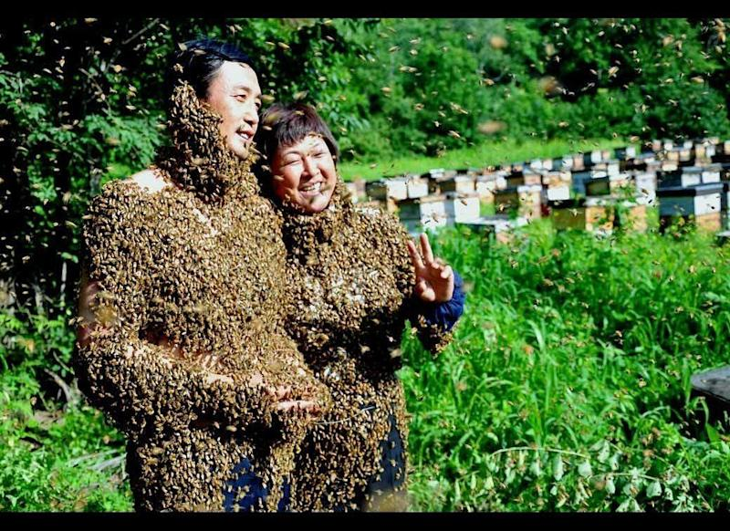 """Oh, Honey: This love was simply meant to """"bee."""" On July 16, 2010, beekeepers Li Wenhua, left, and Yan Hongxia were married in Ning'an, China, while covered in a swarm of 10,000 bees. The honies have worked with insects for more than 20 years, so the nuptials were a perfect fit. To create a buzz for their ceremony, the bride and groom each held a queen bee, which lured the rest of the swarm onto their clothing."""
