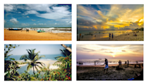 <p>Obviously, Goa is home to almost all of them.</p>