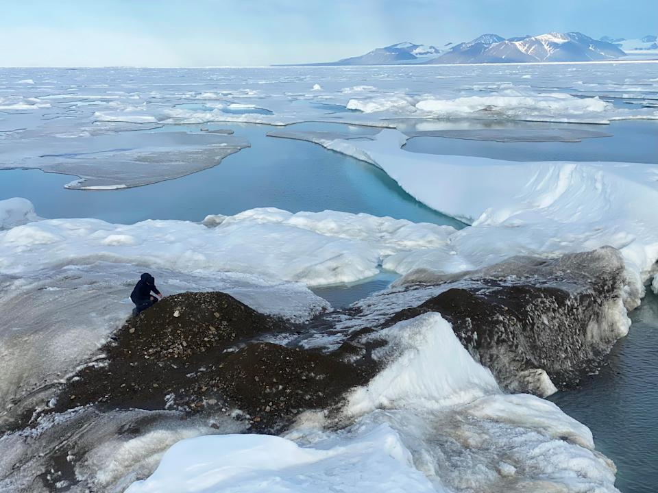 What is the Greenland expedition?