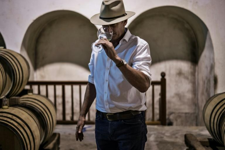 Wine-tasting is popular for well-heeled visitors to South Africa. Above: Anthony Hamilton Russell at his vineyard at Hemel en Aarde, which means 'Heaven and Earth' (AFP/MARCO LONGARI)