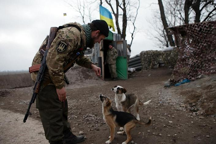 For the Ukrainian soldiers any sign of the long-forgotten joys of normal life is cherished, with the pets around them treated like royalty (AFP Photo/Aleksey Filippov)