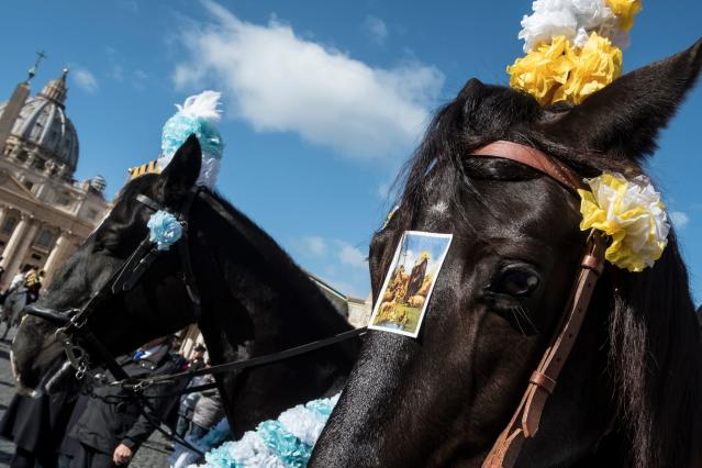 <p>A card with the icona of Saint Anthony Abbot, the patron saint and protector of animals, is seen on the head of a horse in front of the Saint Peter Basilica at the Vatican, during the traditional feast day of blessing for the animals all over Italy, on Jan. 17, 2018. (Photo: Andreas Solaro/AFP/Getty Images) </p>