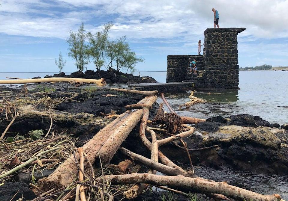 The remains of trees destroyed by flooding from Hurricane Lane in 2018 in Hilo, Hawaii. The state is the first to declare a climate emergency (Getty Images)