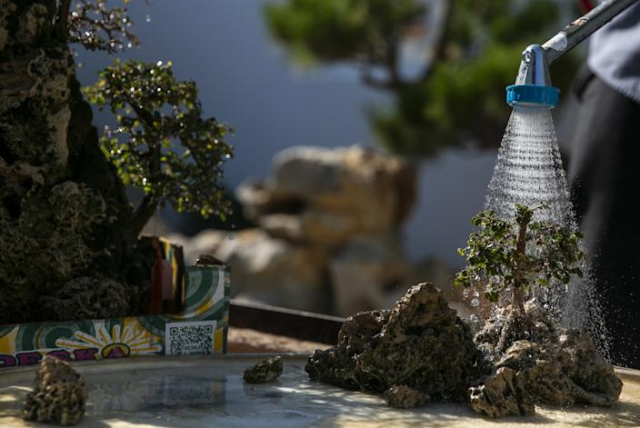"A miniature model landscape at the Huntington get a little rain shower. <span class=""copyright"">(Josie Norris/Los Angeles Times)</span>"