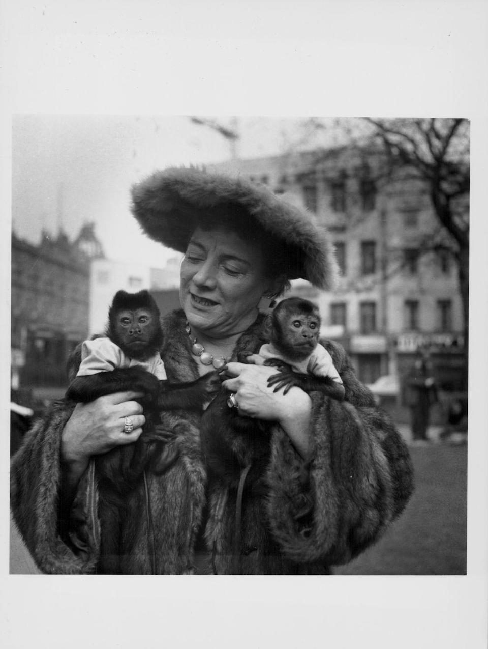 <p>Comedian Hylda Baker steps out in London with her two pet monkeys. Hylda was on her way to perform in the Prince of Wales Royal Variety Show in 1956 and arrived in town, with her pets in tow, beforehand. </p>