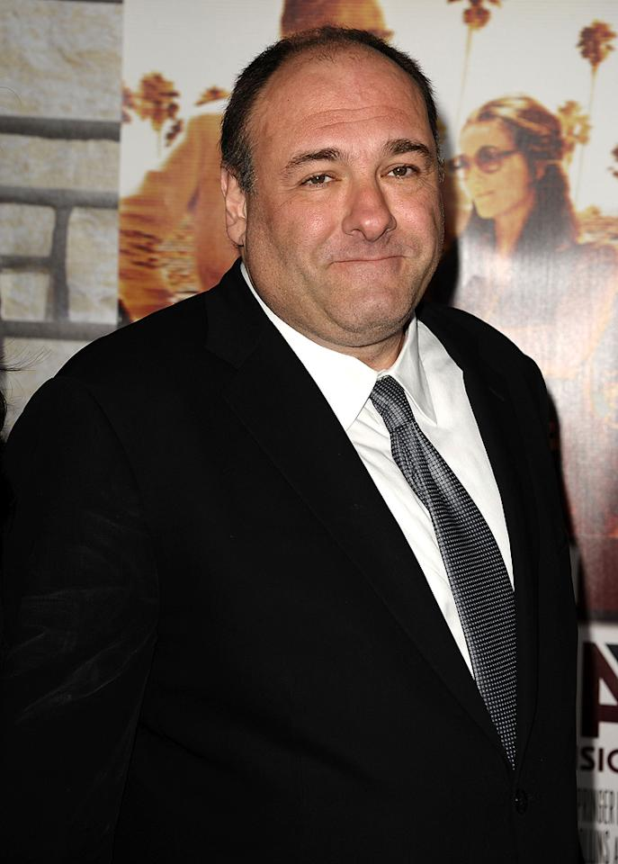 "James Gandolfini (""The Sopranos"") turns 50. Jason LaVeris/<a href=""http://www.filmmagic.com/"" target=""new"">FilmMagic.com</a> - April 11, 2011"
