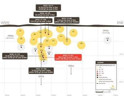 Figure 3. Lotto Long Section (see B-B' on Plan View, Figure 1) (CNW Group/New Found Gold Corp.)