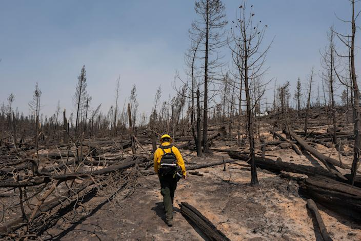 Western Wildfires (Copyright 2021 The Associated Press. All Rights Reserved.)