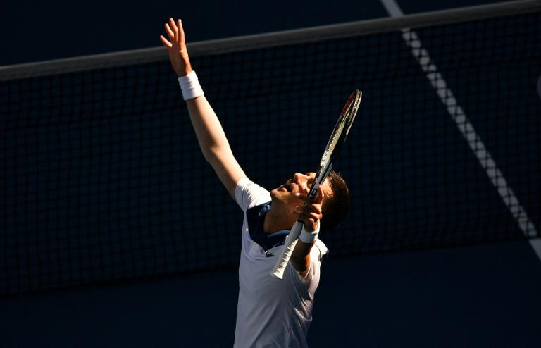 Twelve-time Grand Slam winner Novak Djokovic has been out of action for six months with an injury, but it didn't show in his 6-1, 6-2, 6-4 demolition of American Donald Young