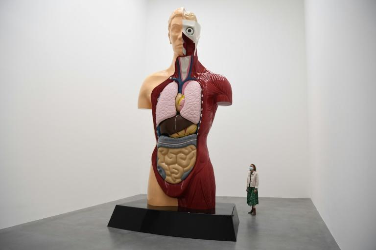 Damien Hirst remembers 'immortal' 90s with new show