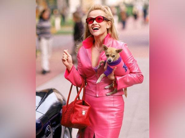 Reese Witherspoon from 'Legally Blonde' (Image source: Instagram)