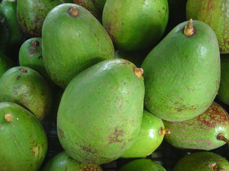 Suspect Arrested in Avocado Assault Case