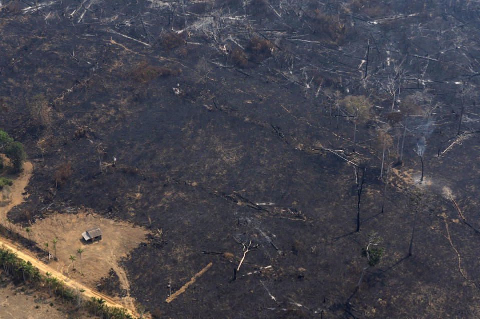A house is seen surrounded by land scorched by wildfires near Porto Velho in Brazil (Picture: AP)