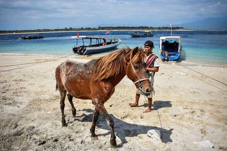 A local resident waits to evacuate a horse following Sunday's earthquake on Gili Trawangan island, North Lombok, Indonesia, August 8, 2018 in this photo taken by Antara Foto.  Antara Foto/Ahmad Subaidi/ via REUTERS