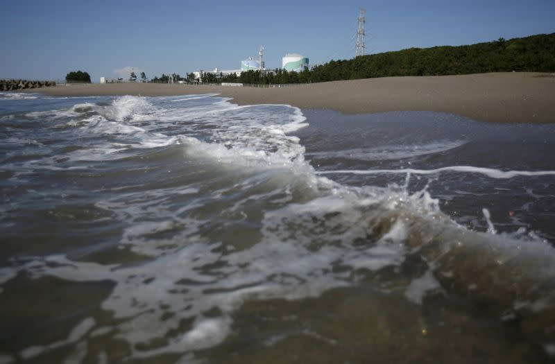 Anti-terror upgrades at reactors mean Japan LNG, coal demand to rise in 2020