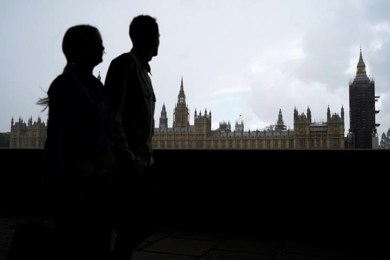 The British government's pandemic plans were too ridigly focused on the flu, the report said (AFP/Niklas HALLE'N)