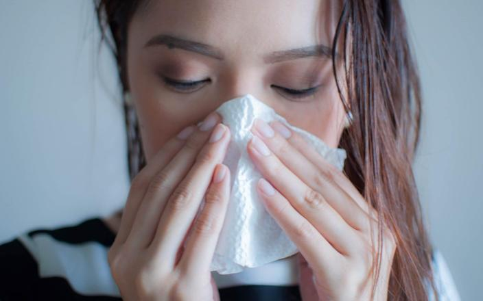 The swine flu epidemic of 2009 was the second time in history humans have been the victim of the H1N1 virus, the first being the Spanish Flu pandemic in 1918 - Karl Tapales/Getty Images Contributor