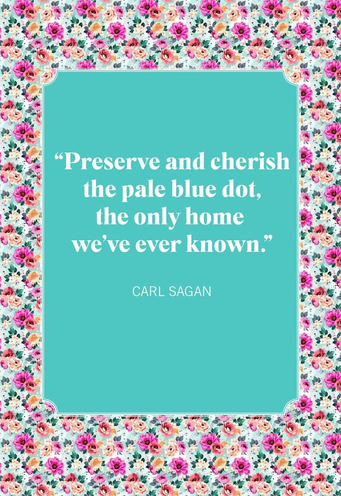 """<p>""""Preserve and cherish the pale blue dot, the only home we've ever known.""""</p>"""