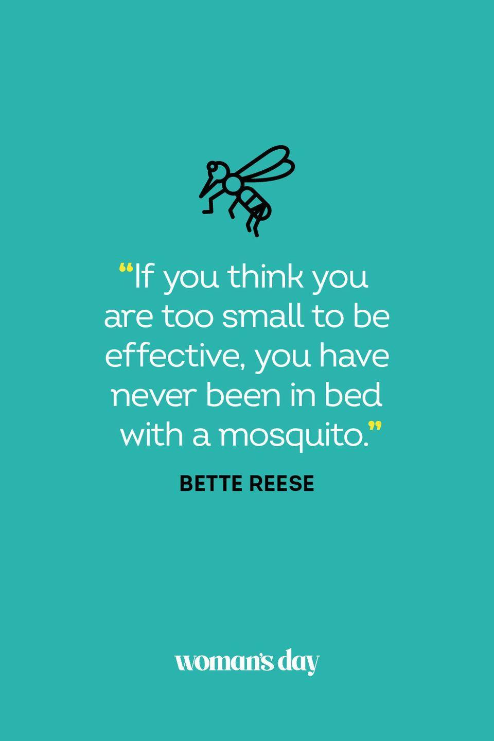 """<p>""""If you think you are too small to be effective, you have never been in bed with a mosquito.""""</p>"""