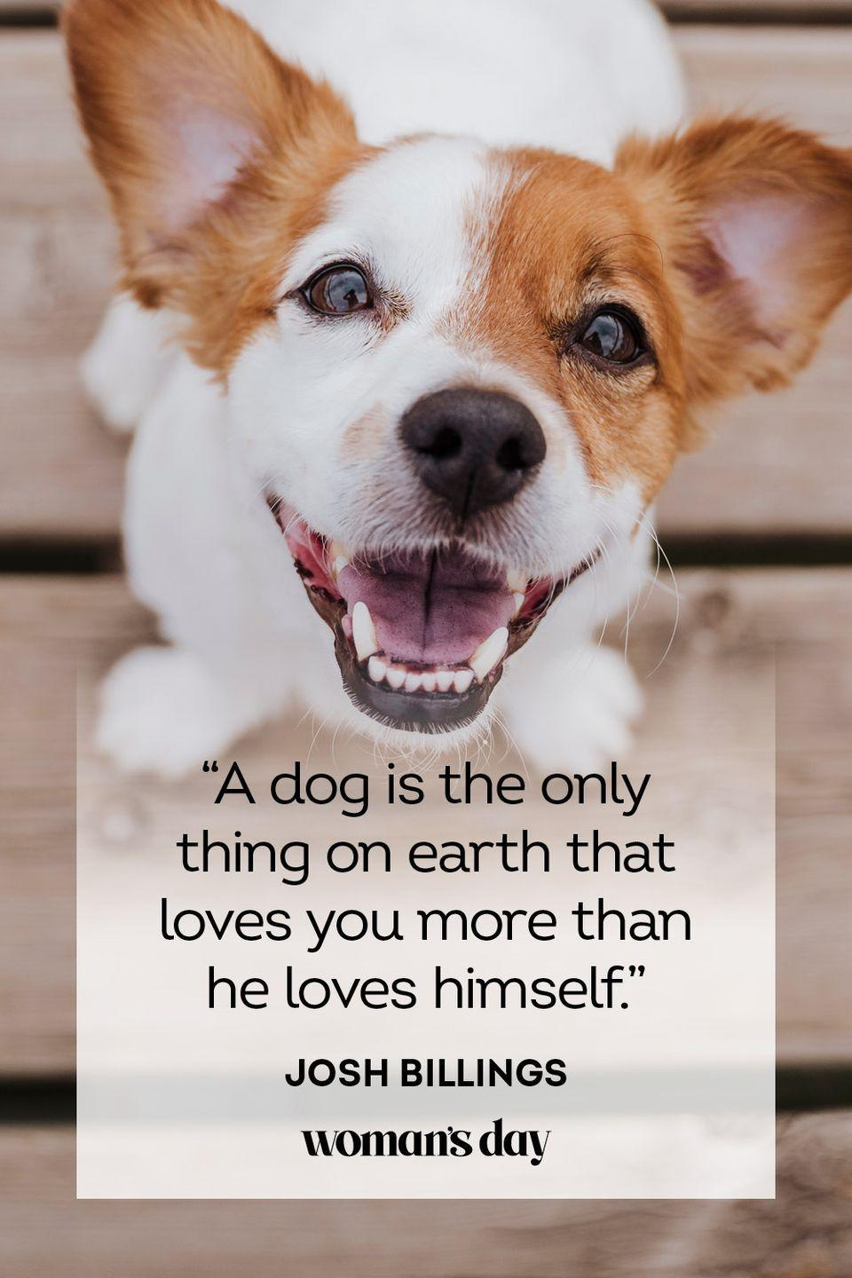 """<p>""""A dog is the only thing on earth that loves you more than he loves himself.""""</p>"""