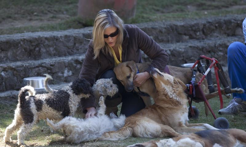 "Patricia Ruiz plays with dogs at her sanctuary for abused and abandoned dogs, ""Milagros Caninos,"" in Mexico City, Friday, Jan. 11, 2013. About 128 abused dogs are sheltered at the Milagros Caninos sanctuary. Dogs on wheelchairs, blind, deaf or ill frolic and run around the huge sanctuary in the southern part of Mexico City. (AP Photo/Eduardo Verdugo)"