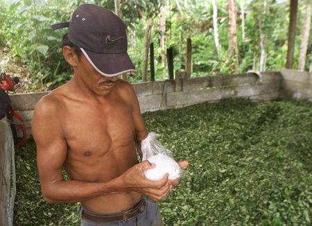 A Colombian peasant holds a bag of coca paste crude semirefined cocaine  at a makeshift drug lab in southern Colombian jungles close to Puerto Asis, Putumayo, in this January 30, 2003 file picture. REUTERS/Daniel Munoz/Files