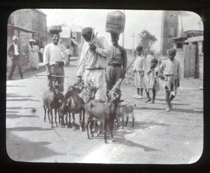 In this 1902 photo provided by York Museums Trust, residents stand alongside a herd of goats in Georgetown, St. Vincent, in the aftermath of explosive eruptions of La Soufrière volcano. In 1902, the warnings of the fish sellers who experienced the volcano up close , were at first dismissed. (Tempest Anderson/York Museums Trust via AP)
